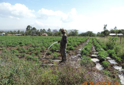 7 Water for Africa projects Test the F mitigation experiment