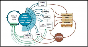 The multidimensional relationship between water stress, food security and socioeconomic development